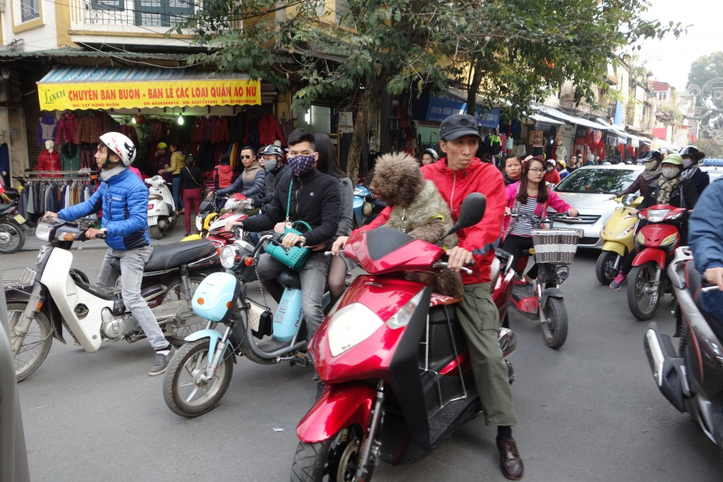 Rush hour in Hanoi's Old Quarter... ...nice of the dog to give his master a ride!